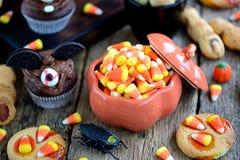 Η σοκολάτα cupcakes ` κτυπά τα δάχτυλα ` μαγισσών ` s μπισκότων ` ` και κουλουρακιών - εύγευστα γλυκά αρτοποιείων για τον εορτασμ Στοκ Εικόνες