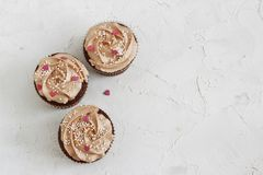 Η σοκολάτα cupcakes που διακοσμήθηκε με την κρέμα αυξήθηκε καρδιές Στοκ φωτογραφία με δικαίωμα ελεύθερης χρήσης