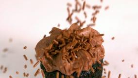 Η σοκολάτα ψεκάζει την πτώση επάνω στη σοκολάτα cupcake στο άσπρο υπόβαθρο απόθεμα βίντεο
