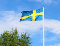 Η σουηδική σημαία Στοκ Εικόνες