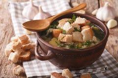 Η σούπα σκόρδου με σπιτικά croutons κλείνει επάνω σε ένα κύπελλο horizonta Στοκ εικόνες με δικαίωμα ελεύθερης χρήσης