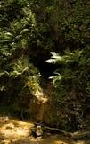 Η σπηλιά Στοκ εικόνα με δικαίωμα ελεύθερης χρήσης
