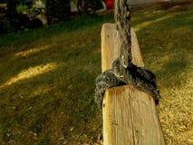 Η σπιτική μόνιμη ταλάντευση, φιαγμένη από σανίδα του ξύλου έδεσε σε ένα σχοινί, στο μπάλωμα της χλόης Στοκ Φωτογραφία