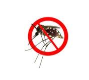 Η στάση απαγορεύει το σημάδι στο κουνούπι στοκ φωτογραφία με δικαίωμα ελεύθερης χρήσης