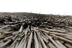 Η στέγη ενός καλάμου δεν ρέει ποτέ στοκ φωτογραφίες με δικαίωμα ελεύθερης χρήσης