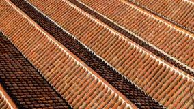 Η στέγη του μεγάλου μουσουλμανικού τεμένους σε Chefchaouen, Μαρόκο Στοκ Εικόνα