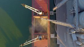 Η στενή άποψη των συγκομιδών σιταριού φόρτωσης σκαφών στο μαζικό ναυλωτή μέσω του κορμού στο ανοικτό φορτίο κρατά στο τερματικό σ φιλμ μικρού μήκους