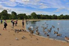 Η στρογγυλή λίμνη, Kensington GardensThe γύρω από τη λίμνη, κήποι Kensington Στοκ εικόνες με δικαίωμα ελεύθερης χρήσης