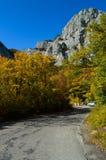 Η στροφή του στενού δρόμου βουνών καλύπτεται με την άσφαλτο Στοκ Φωτογραφία