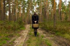 Η συλλογή γυναικών ξεφυτρώνει στο σκοτεινό ειρηνικό δάσος, διαφυγή από την πόλη, συγκομιδή μανιταριών Στοκ φωτογραφία με δικαίωμα ελεύθερης χρήσης