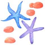 Η συλλογή watercolor οστρακόδερμων και αστεριών υπόβαθρο, χέρι που σύρεται στο άσπρο για τα παιδιά, ευχετήρια κάρτα, περιπτώσεις  διανυσματική απεικόνιση