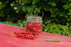 Η συμβολοσειρά δοχείων γυαλιού άγριων φραουλών έκαμψε τον καρπό υγείας στοκ φωτογραφίες