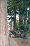 Η συνεδρίαση κοριτσιών στον πάγκο με το τηλέφωνο Στοκ Φωτογραφίες