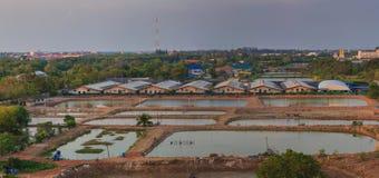 η συσκευή εμπλουτισμού σε διοξείδιο του άνθρακα εκτρέφει τις εθνικές γαρίδες Ταϊλάνδη SAM roi πάρκων yot Στοκ εικόνα με δικαίωμα ελεύθερης χρήσης