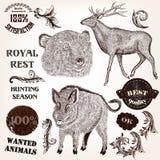 Η συλλογή συρμένων των χέρι ζώων, ονομάζει και στροβιλίζεται στο παλαιό s Στοκ Εικόνες