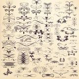 Η συλλογή του διανυσματικού χεριού που σύρεται ακμάζει στο χαραγμένο ύφος Εγώ Στοκ Εικόνες