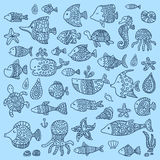 Η συλλογή των θαλασσίων ψαριών και των θηλαστικών Στοκ Φωτογραφίες