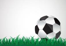 Η σφαίρα βρίσκεται στη χλόη Ένας αγώνας ποδοσφαίρου επίσης corel σύρετε το διάνυσμα απεικόνισης Μια όμορφη σφαίρα και μια πράσινη διανυσματική απεικόνιση
