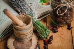 Η σύνθεση από τα εργαλεία των φυσικών χορταριών θεραπείας Στοκ Φωτογραφία