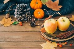 η σύνθεση κεριών φθινοπώρου μήλων ξηρά βγάζει φύλλα vase απόλυσης μήλα φρέσκα Στοκ φωτογραφία με δικαίωμα ελεύθερης χρήσης