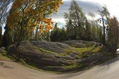η σύνθεση κεριών φθινοπώρου μήλων ξηρά βγάζει φύλλα vase απόλυσης Στοκ Φωτογραφία