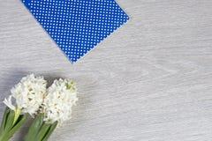 Η σύνθεση λουλουδιών με τους άσπρους υάκινθους η ανασκόπηση ανθίζει το διανυσματικό λευκό άνοιξη απεικόνισης 2 όλα τα αυγά Πάσχας Στοκ Εικόνα