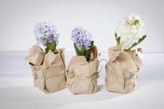Η σύνθεση λουλουδιών τους ιώδεις και άσπρους υάκινθους που τυλίγονται με στο έγγραφο του Κραφτ η ανασκόπηση ανθίζει το διανυσματι Στοκ Εικόνες