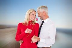 Η σύνθετη εικόνα του όμορφου ατόμου που δίνει στη σύζυγό του έναν ρόδινο αυξήθηκε Στοκ Εικόνες