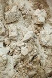 Η σύσταση άμμου Στοκ εικόνες με δικαίωμα ελεύθερης χρήσης