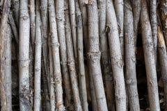 Η σύσταση επιφάνειας του ξύλου Στοκ εικόνες με δικαίωμα ελεύθερης χρήσης