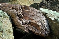 Η σύσταση της πέτρας και του ξύλου Στοκ φωτογραφία με δικαίωμα ελεύθερης χρήσης