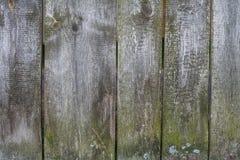 Η σύσταση του παλαιού φράκτη των ξύλινων σανίδων στοκ φωτογραφία