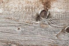 Η σύσταση του φυσικού παλαιού ξύλινου ξεπερασμένου πίνακα με τις γραμμές ρωγμών, καμπύλες, στροβιλίζεται Κινηματογράφηση σε πρώτο Στοκ Εικόνες