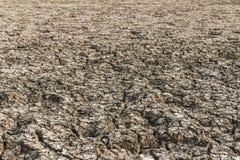 Η σύσταση, χώμα αργίλου, αφυδατωμένο χώμα δεν είναι εύφορη, ράγισμα στοκ εικόνες