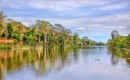 Η τάφρος που περιβάλλει Angkor Thom σε Siem συγκεντρώνει, Καμπότζη Στοκ Εικόνες