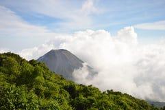 Η τέλεια αιχμή του ενεργού και νέου ηφαιστείου Izalco που βλέπει από ένα σημείο άποψης Cerro Verde στο εθνικό πάρκο στο Ελ Σαλβαδ Στοκ Εικόνα