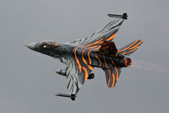 Η τίγρη F-16 συναντιέται στοκ εικόνα με δικαίωμα ελεύθερης χρήσης