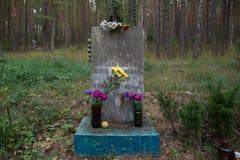 Η ταφόπετρα στο δάσος στοκ εικόνες με δικαίωμα ελεύθερης χρήσης