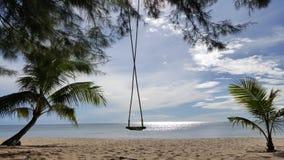 Η ταλάντευση και oconut το δέντρο στην παραλία Στοκ φωτογραφία με δικαίωμα ελεύθερης χρήσης