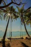 Η ταλάντευση κρεμά από το δέντρο καρύδων πέρα από την παραλία όμορφες νεολαίες γυναικών διακοπών λιμνών έννοιας Στοκ εικόνες με δικαίωμα ελεύθερης χρήσης