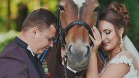 Η τοποθέτηση νυφών και νεόνυμφων δίπλα στο άλογο Κτυπούν χαρωπά το άλογο ευτυχής από κοινού ευτυχής εκλεκτής ποιότητας γάμος ημέρ απόθεμα βίντεο