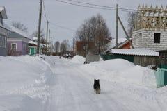 Η του χωριού οδός Βόρειο χωριό Ricasoli Στοκ Φωτογραφίες