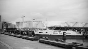 Η τράπεζα του ωκεανού Στοκ Φωτογραφίες