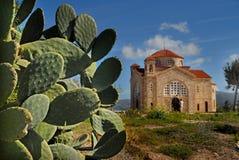 Η τρέχουσα θερινή ημέρα εκκλησιών, ο ουρανός τα τραχιά σύννεφα τραχιών αχλαδιών κάκτων του μεσημεριού πράσινα στοκ εικόνα με δικαίωμα ελεύθερης χρήσης