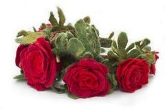 Η τρίχα περικαλυμμάτων με μια διακοσμητική διακόσμηση υπό μορφή λουλουδιών από το μαλλί Στοκ εικόνα με δικαίωμα ελεύθερης χρήσης