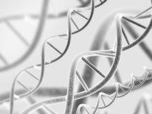 η τρισδιάστατη απεικόνιση DNA δίνει τη δομή Στοκ εικόνες με δικαίωμα ελεύθερης χρήσης