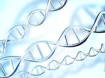 η τρισδιάστατη απεικόνιση DNA δίνει τη δομή ελεύθερη απεικόνιση δικαιώματος