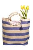 η τσάντα ανθίζει picnic Στοκ εικόνες με δικαίωμα ελεύθερης χρήσης