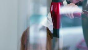 Η υγρή τρίχα είναι ξηρά από το hairdryer Αρσενικός στιλίστας χεριών με ένα hairdryer απόθεμα βίντεο