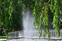 Η υδρονέφωση Στοκ Εικόνες